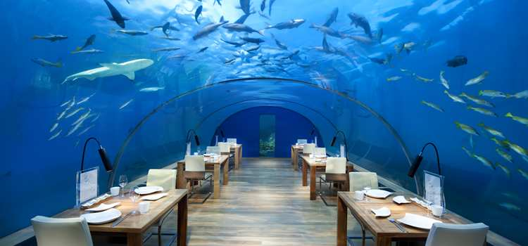 The First Undersea Restaurant in the World Celebrates 10th Anniversary