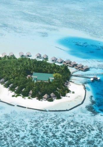 gangehi island resort 74